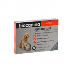 BIOCANINA ARTHROPLUS PROBLEMES ARTICULAIRES CHIEN 40 COMP
