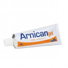 ARNICAN Gel - 50 g