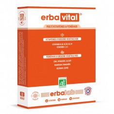 ERBALAB Erbavital 30 gélules