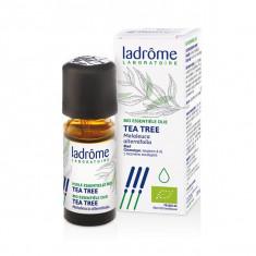 LADROME Huile Essentielle de Tea Tree BIO 10ml