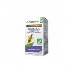 ARKOGELULES Ispaghul Mucivital BIO 45 gélules