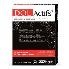 ARAGAN SynActifs Dolactifs 15 gélules