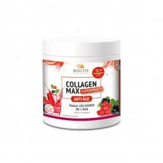 BIOCYTE Collagen Max Poudre Superfruit 260g