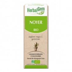 Herbalgem Noyer BIO 30ml