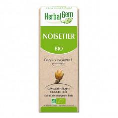 5425009101742 - Herbalgem Noisetier BIO 30ml
