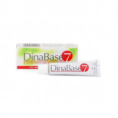 DINABASE 7 Gel Fixatif Appareil Dentaire 20g