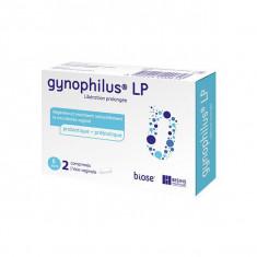 GYNOPHILUS LP 2 comprimés