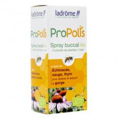 Ladrôme Propolis spray buccal BIO 30 ml
