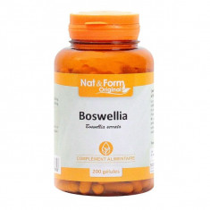 N&F200 Boswellia