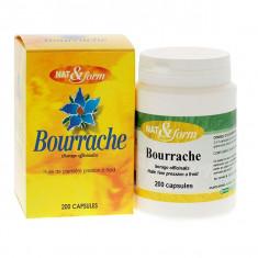 N&F200 Bourrache
